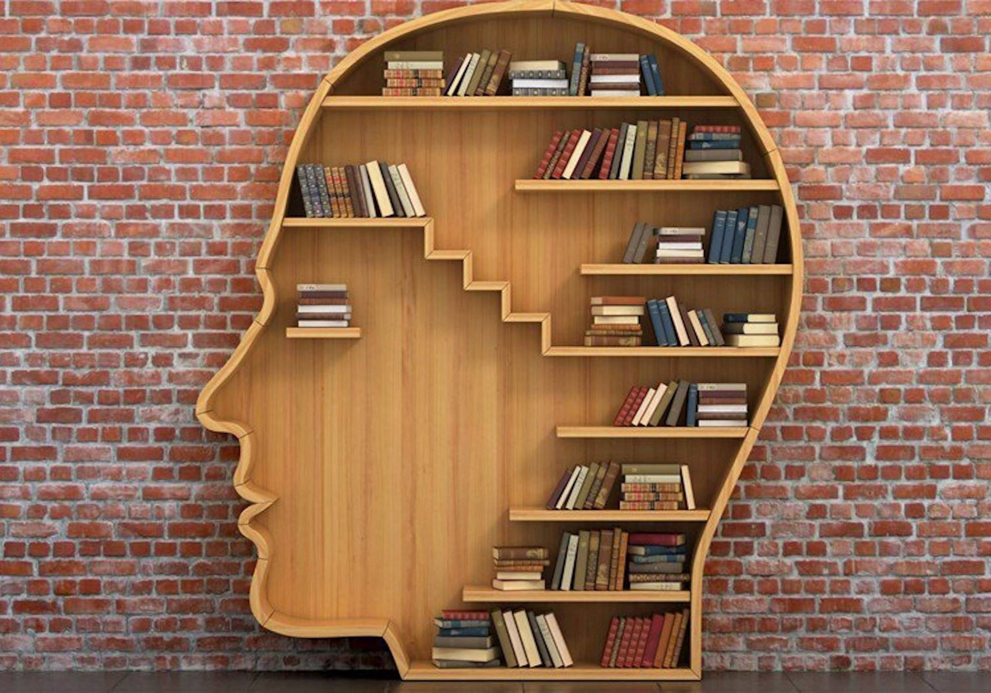 HeadBookShelf